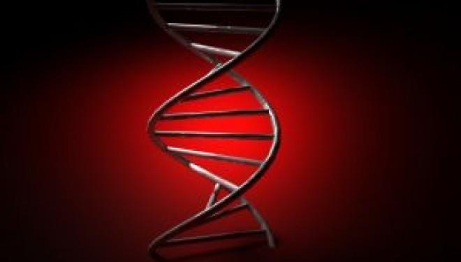 Covert DNA Test Kits