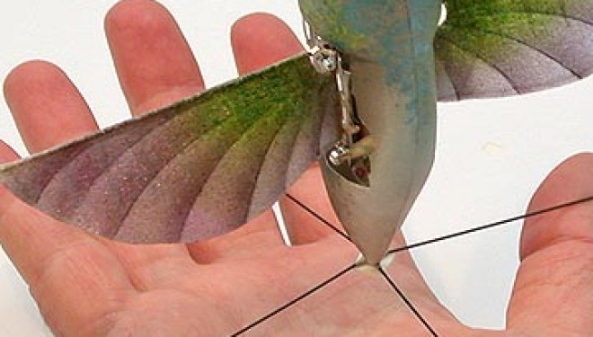 Pentagon Seeks To Use Hummingbird and Insect Drones to Spy