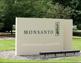 Monsanto Building a Monopoly on Genetically Modified Organisms