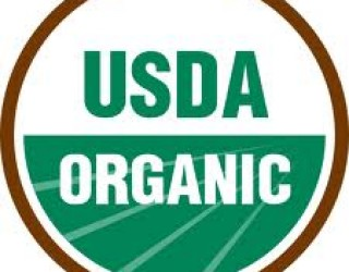 Despite Poor Economy Americans Turn to Organic Foods