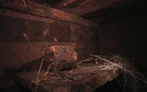 noahs ark found 2010