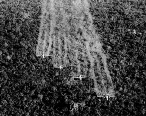 spraying agent orange