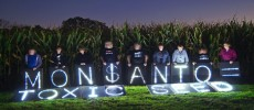 Monsanto Has a Department Dedicated to Discrediting Anti-GMO Scientists