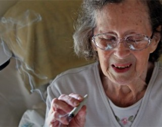 Smoking Weed – Does Science Support Decriminalized Marijuana?