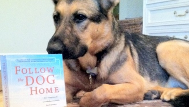 New Book by Walsh Family Tells of How Dogs Never Forget Home