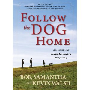 follow the dog