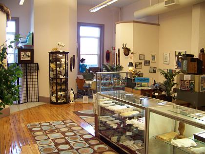 cryptozoology museum