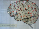 The Myth That People Only Use 10 Percent of Their Brains