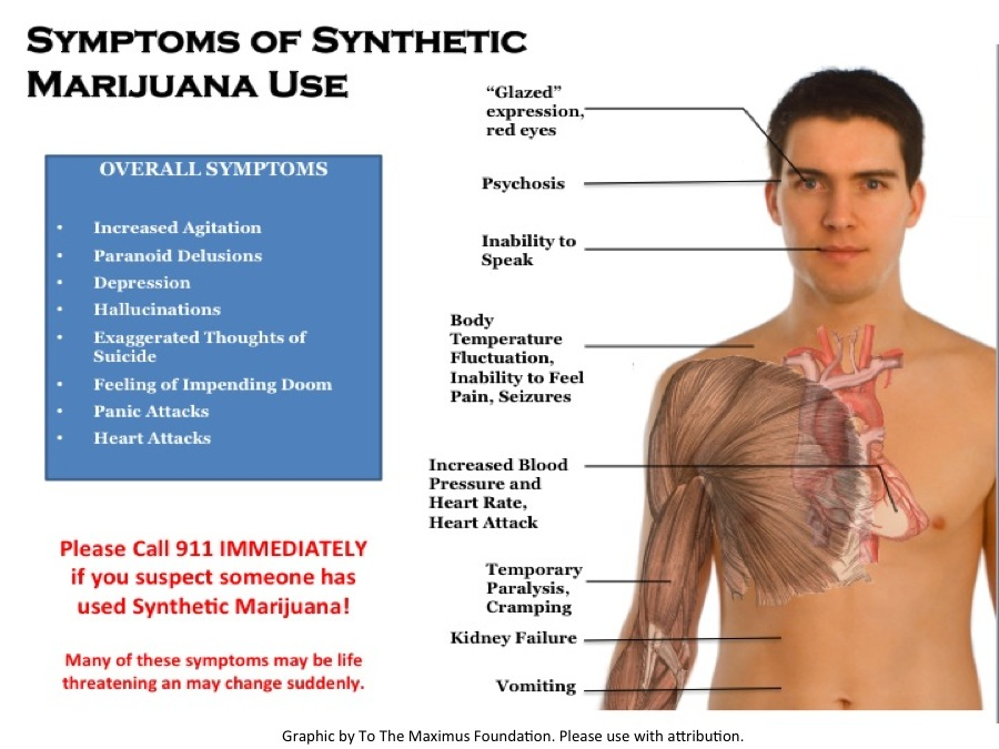 synthetic weed infographic