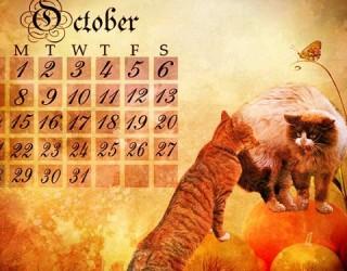 Illuminati October Surprise – Where Did This Meme Come From?