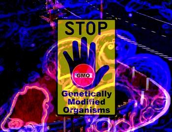 anti-gmo