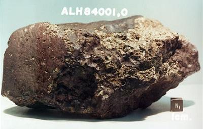 alh meteorite