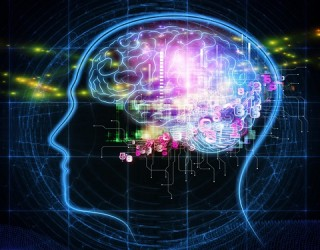 Lumosity Brain Games – Does Science Support the Claims?