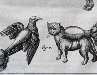 Cats and Birds with Jet Packs Found in 16th Century Warfare Manual