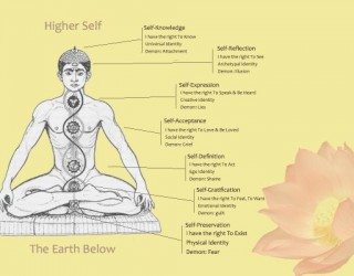 The Science of Chakra Energy – Is There Any?
