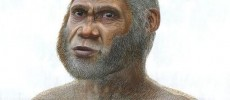 Were the Red Deer Cave People Another Species of Humans?