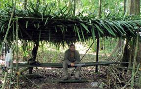 swamp shelter