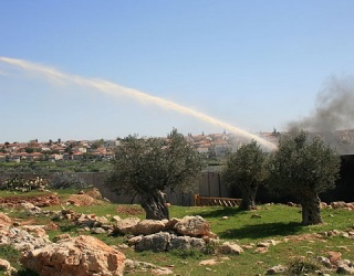 Israeli Skunk Spray: Just More Palestinian Harassment?