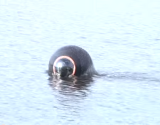 Will the Marines Soon Have a Robotics Ball Guarding the Coast?