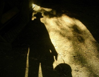 Do You See Shadow People? Sleep May Not Always Be to Blame