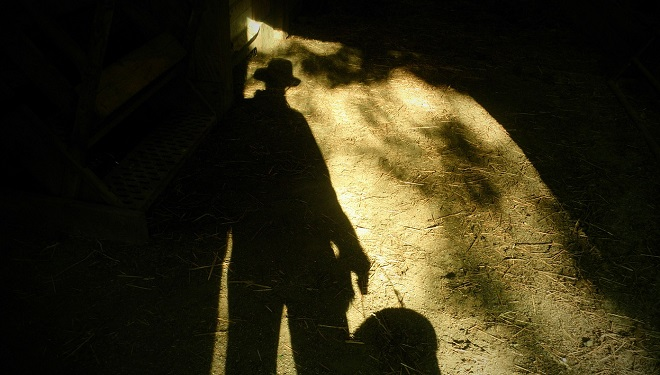 Re: Do You See Shadow People? Sleep May Not Always Be to Blame
