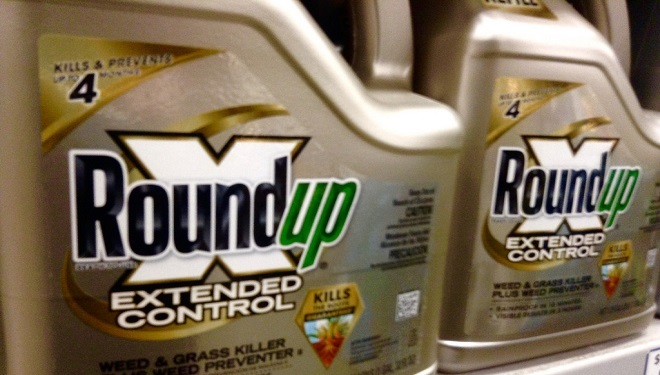 Here's Why France Banned Monsanto Herbicide Roundup in Nurseries
