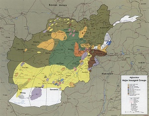 major insurgent groups map