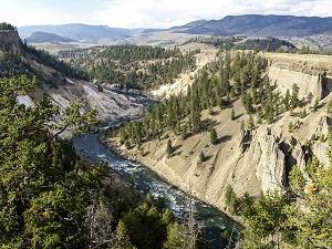 yellowstone national park canyons