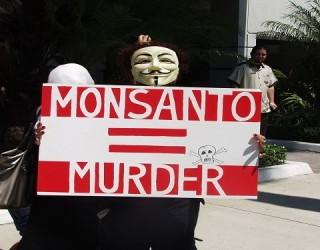 """Monstanto Faces """"Ecocide"""" Charges in The Hague"""