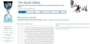 wikileaks saudi cables