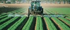 Are Pesticides Causing Chronic Illnesses?