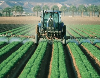 Are Pesticides Causing Chronic Illnesses?