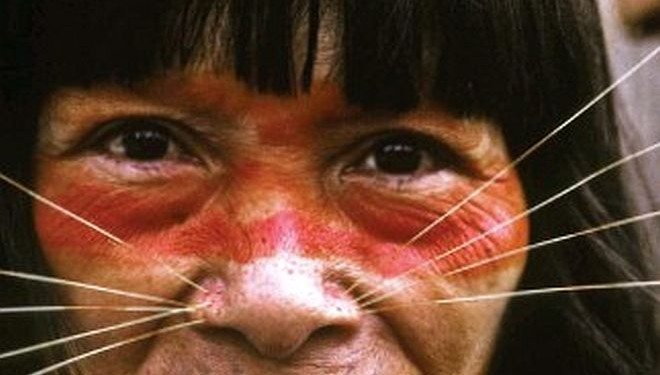 How an Explorer Discovered a Telepathic Tribe in the 1960s
