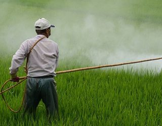 Monsanto Hires Shills to Fight Negative Online Publicity