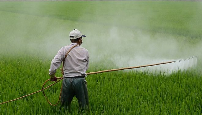 Monsanto Scientist Makes Snopes to Water Down Its Article on Roundup