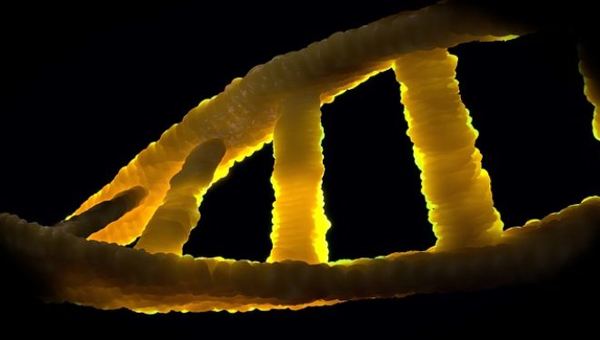 Researchers says DNA surgery remove Disease of Embryos