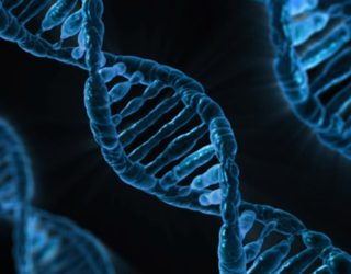 US Defense Explores Gene Drives: Here's Why You Should Worry