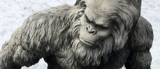 3 Eerie Sasquatch Encounters on Military Bases