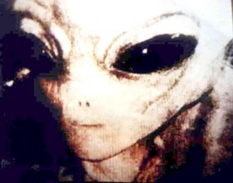 alleged alien photo