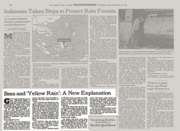 new york times yellow rain article